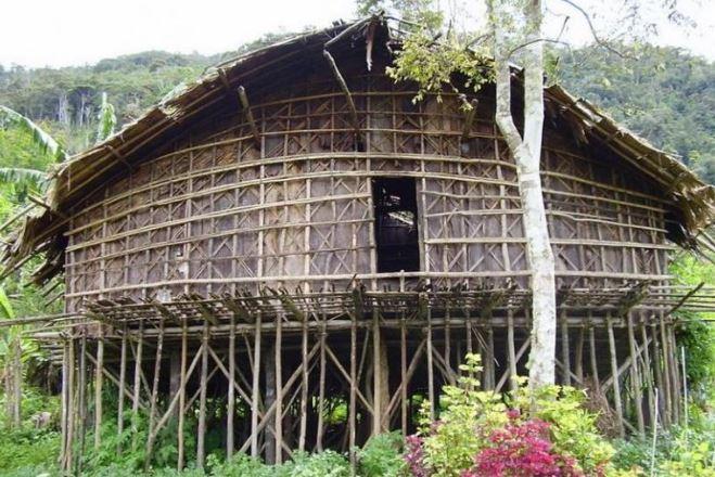 gambar rumah suku papua barat