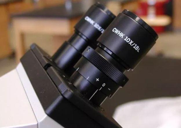 Sendi Inklinasi mikroskop