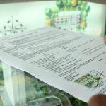 13+ Contoh Surat Resmi Dinas Perusahaan, Sekolah & Pemerintahan